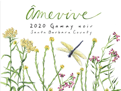Amevive Gamay Noir Santa Barbara County