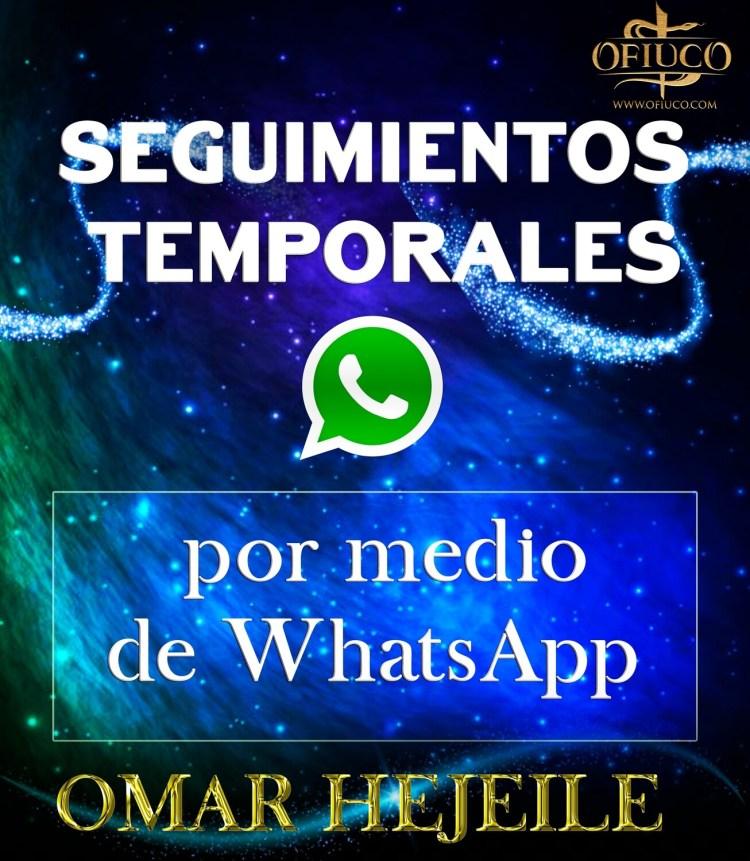 Seguimientos por WhatsApp