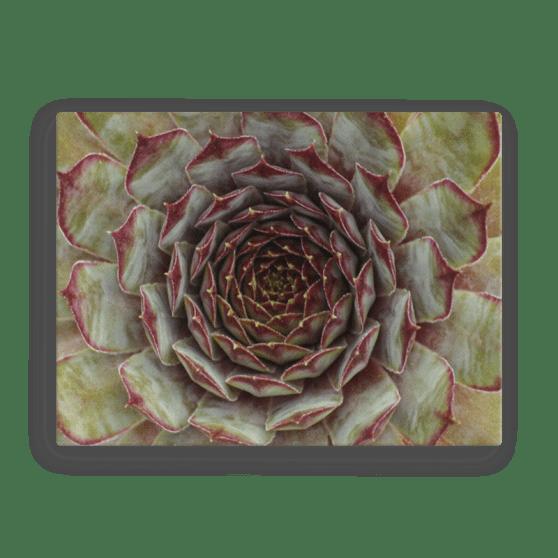 Nature's Mandala Canvas Print