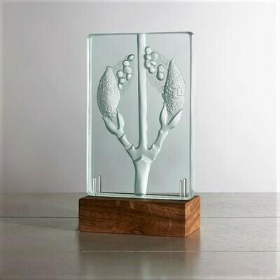 Snake-Bark Maple. Engraved Sandblasted Glass Table Light Sculpture By Tim Carter