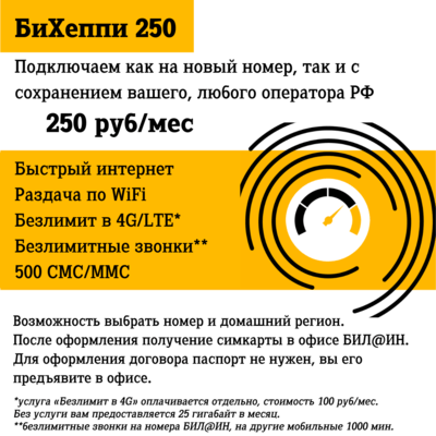 SIM карта «БиХеппи 250», симкарта с безлимитными звонками