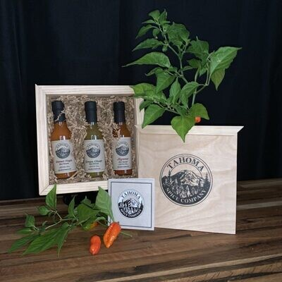 Poplar Wooden Gift Box