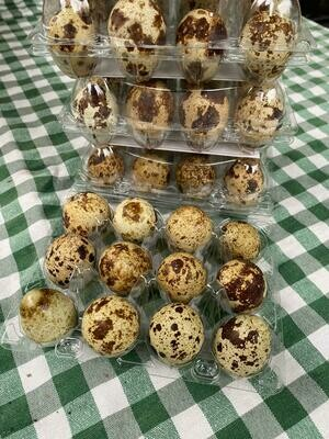 Free-range quail eggs: box of twelve. Nathan's.