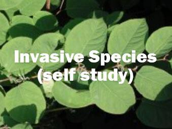 Invasive Species - Self Study Course
