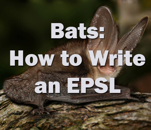 Bats: How to write an European Protected Species Licence - Devon - Friday 7th October 2021