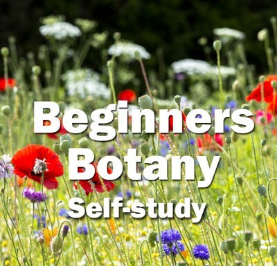 Beginners Botany Self-Study