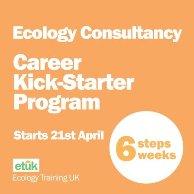 Ecology Consultancy Career Kick-Starter Program