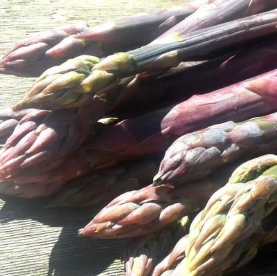 Asparagi dolci misti (500g)