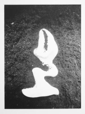La Découvert | Damien Guggenheim