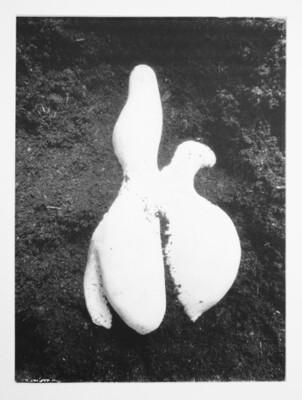 La Découverte | Damien Guggenheim