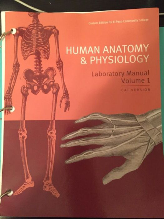 human anatomy & physiology laboratory manual cat version 12th ...