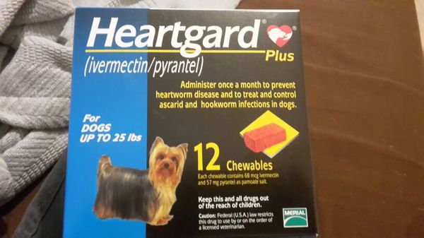 Heartgard Plus For Dogs Up To 25 Lbs 12 Month The Best Dog 2017