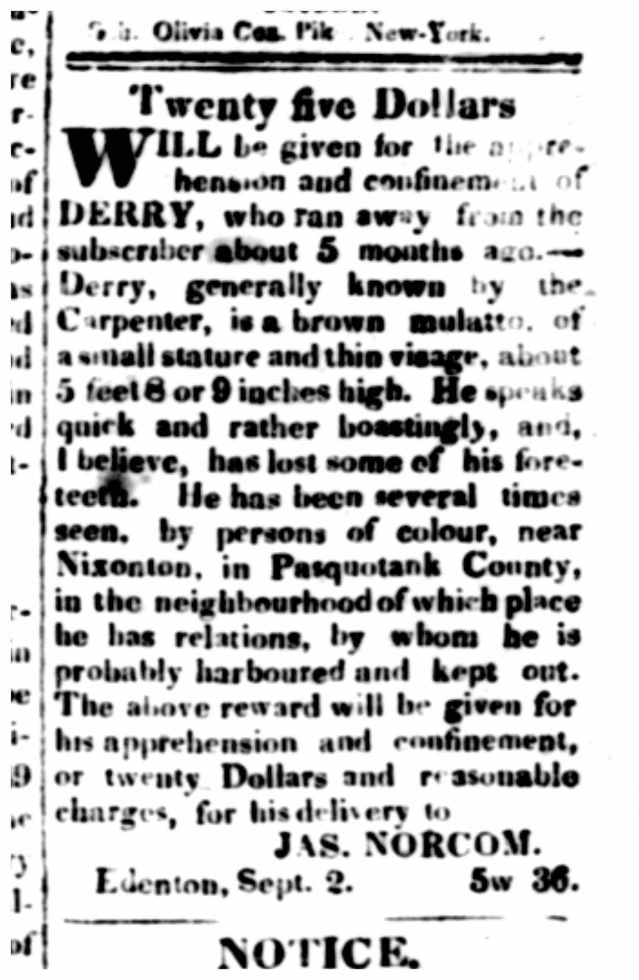 A Runaway Slave Advertisement Placed By Dr James Norcom