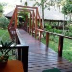 Rainforest_Posada