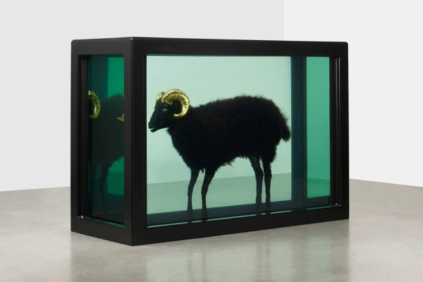 Expensive Damien Hirst Art Pieces Sold Auctions