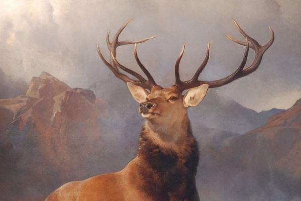 Famous Animal Paintings Widewalls