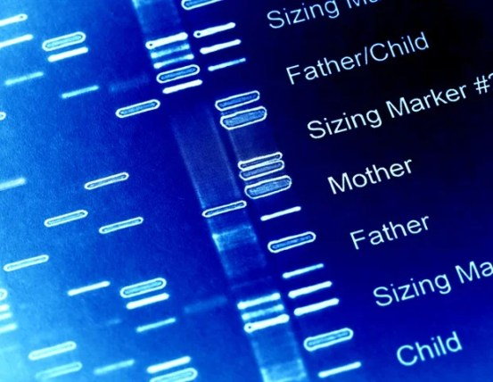 Extensive genome-wide sequencing in the Middle East population reveals genetic risk factors