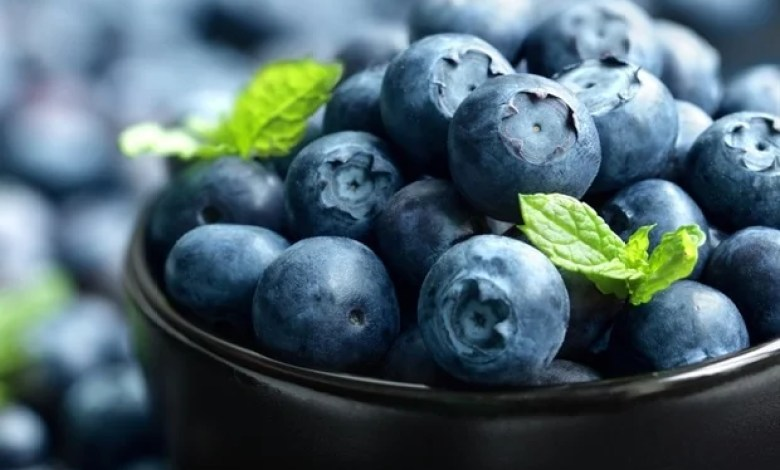 Protein found in cow's milk could increase absorption of blueberries' nutrients
