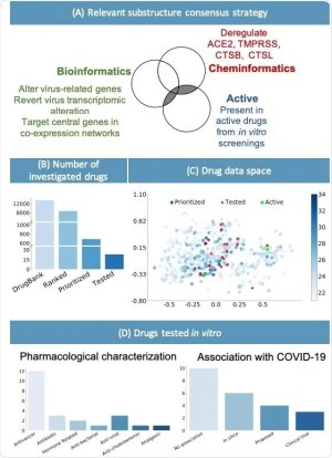 Verification of a candidate for a drug for the treatment of COVID-19 using computer methods