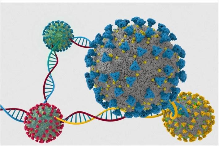 Çalışma: Altı Kıtadan SARS-CoV-2'nin S-Proteini Varyantlarından Türetilen Çıkarımlar.  Resim Kredisi: Limbitech / Shutterstock