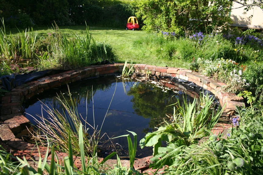 Design Your Own Garden Pond