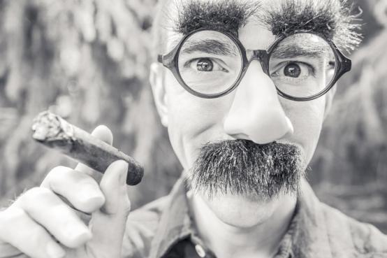 葉っぱの喫煙男性の男の顔の口ひげのヘアメラスの目の鼻の手の人々