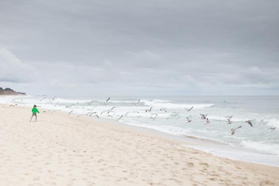 海の海の青い水の性質白い砂浜の海岸の雲の空の人々の人々孤児の子供の鳥飛行