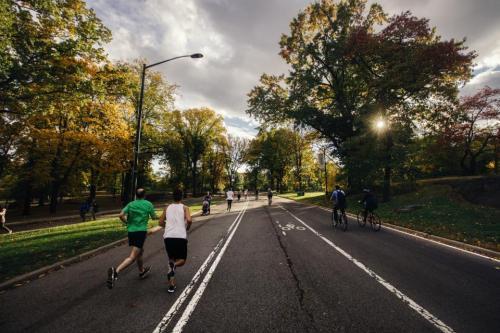 運動、ランナー、人々、通り、道路、自転車、自転車、自転車、サイクリスト、木、自然、太陽、都市、友人、健康