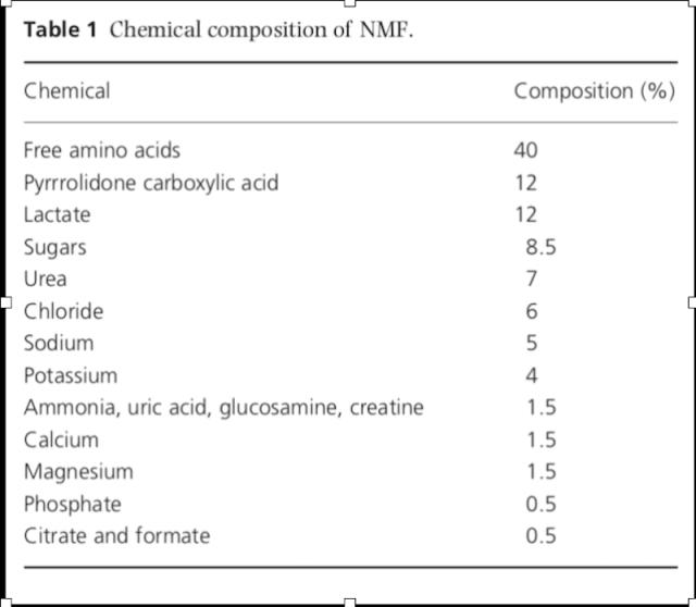 Constitiuents of NMF