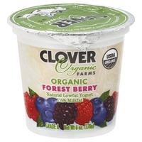 Yogurt at Whole Foods Market Instacart
