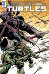 Teenage Mutant Ninja Turtles #67 (Retailer 10 Copy Incentive Variant Cover Edition)