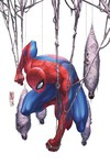 Spider-Man Master Plan (One shot) (Camuncoli Variant Cover Edition)