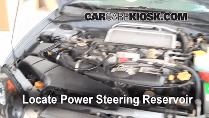 check power steering level
