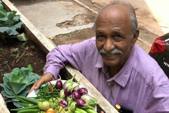 Bangalore, Grow Your Own Terrace Garden With The Help Of This NGO ...