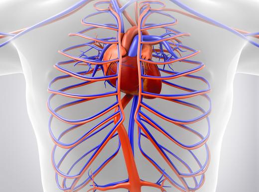 I sintomi dello scompenso cardiaco
