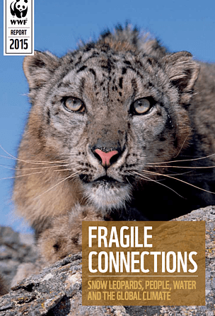 snow leopard anatomy diagram 2003 pontiac vibe radio wiring wwf fragile connections leopards people water and the global climate