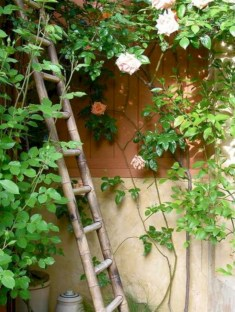 Gorgeous diy ladder-style herb garden 05
