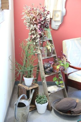 Gorgeous diy ladder-style herb garden 18