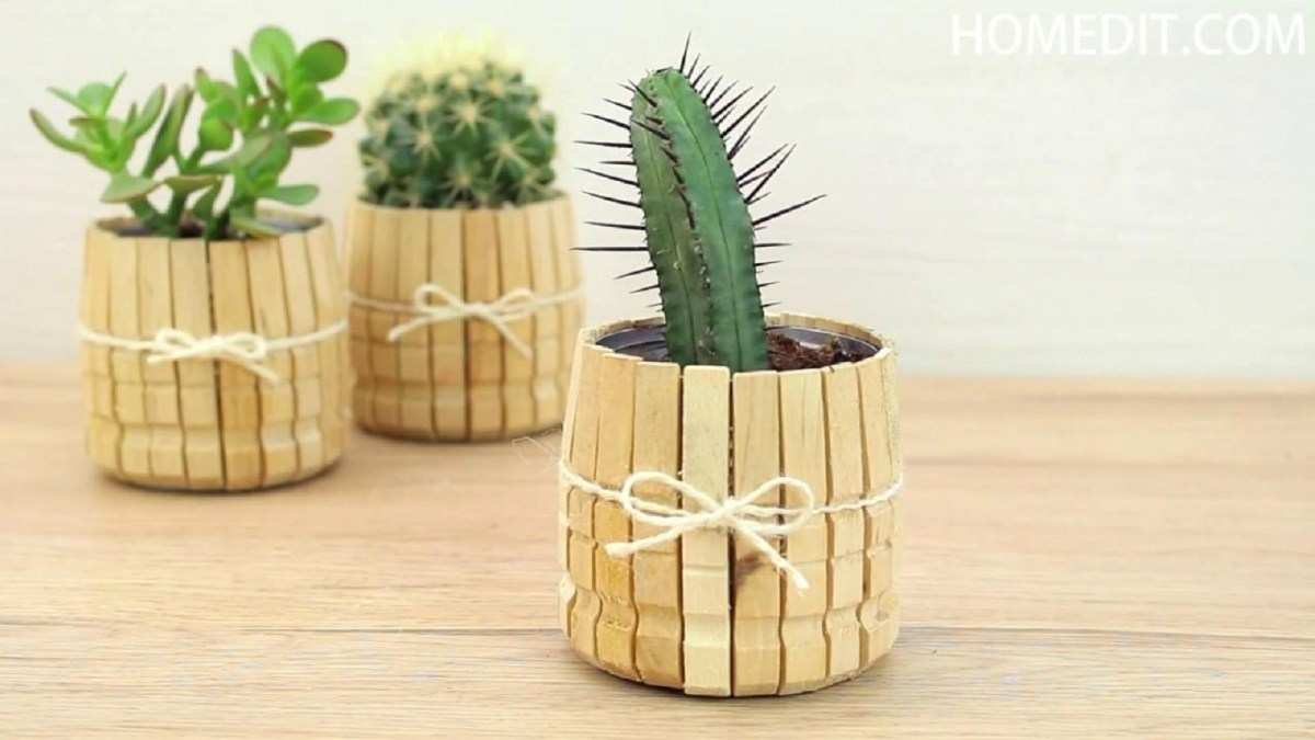 Clothespins for planters Unconventional DIY Craft Ideas You Can Do With Wood Clothespins