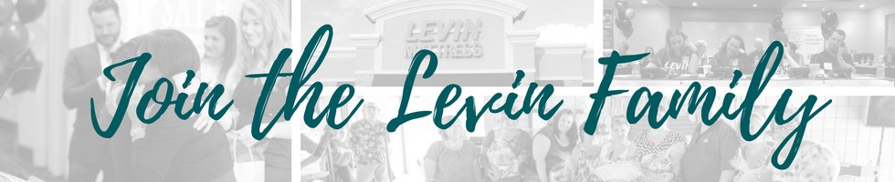 How Much Does Levin Furniture Pay