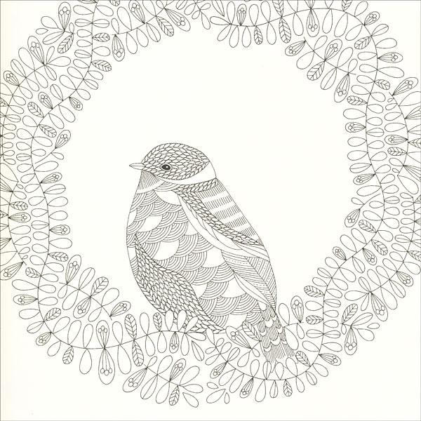 Animal Kingdom Coloring Book from KnitPicks.com Knitting