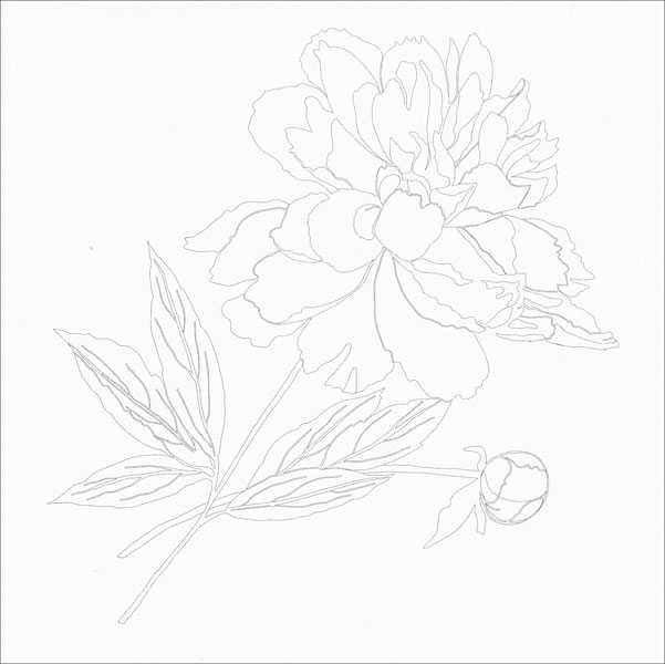 Vive Le Color! Flowers Coloring Book from KnitPicks.com