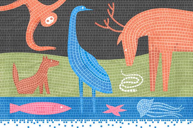 Será que as bactérias levaram os animais a se originarem? Imagem: James O'Brien para a Quanta Magazine