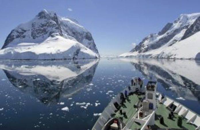 Lemaire Channel in Antarctica Wildlife