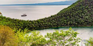 Darwin Lake and Palo Santo Trees, Isabela Island, Galapagos