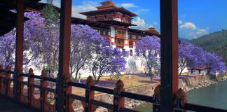 Punakha Dzong in Bhutan - carbon negative country