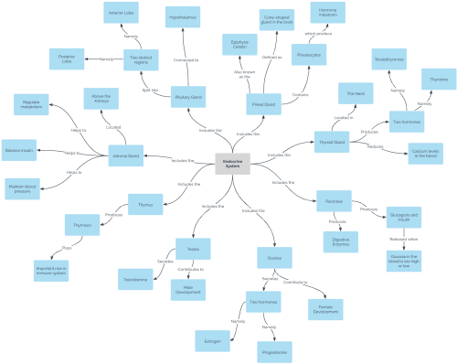 small resolution of concept map template