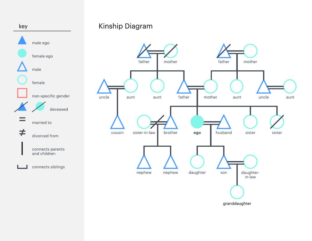 medium resolution of kinship diagram template