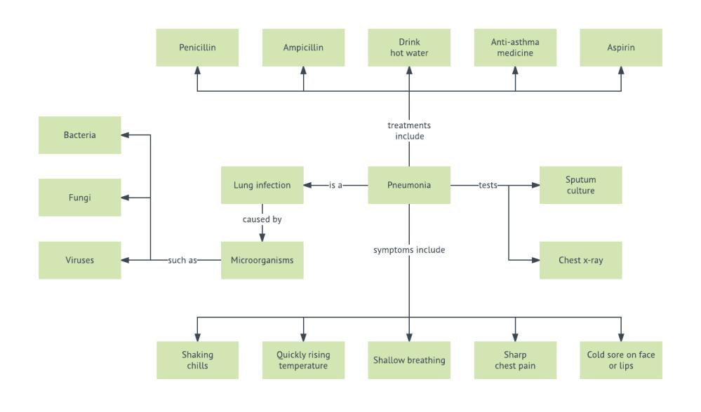 medium resolution of pneumonia concept map