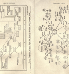 the lesser known synonyms organigram and organogram came into use in the 1960s  [ 1342 x 974 Pixel ]